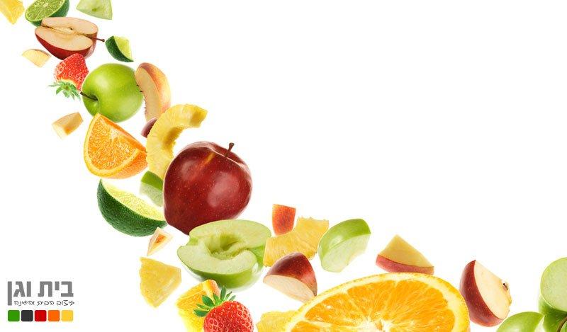 מה זה פרי?
